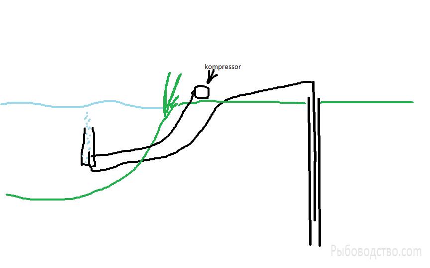 Пруд на даче - Новый точечный рисунок.png