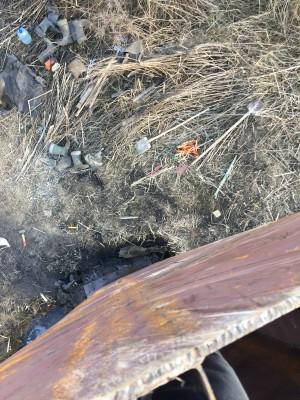 Тамбовская область, старый пруд 0.76 га. Востановление - IMG_5933.JPG