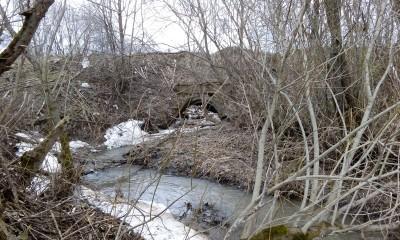 Пруд из болота - IMG_20170429_172901.jpg