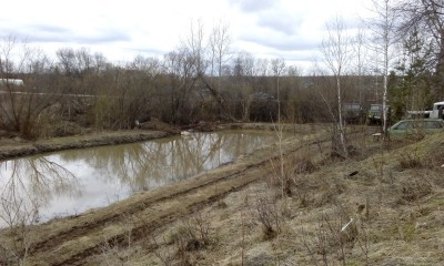 Пруд из болота - IMG_20170429_173403.jpg