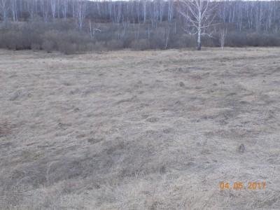 Получение земель под создание водоема - DSCN0425.JPG