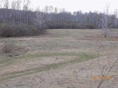 Получение земель под создание водоема - DSCN0432.JPG