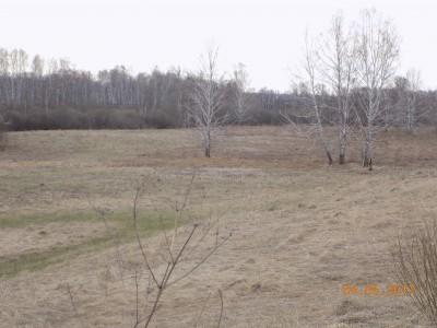 Получение земель под создание водоема - DSCN0433.JPG