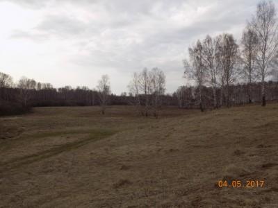 Получение земель под создание водоема - DSCN0434.JPG