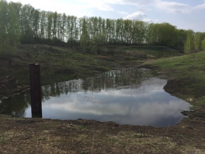 Тамбовская область, старый пруд 0.76 га. Востановление - IMG_8073.JPG
