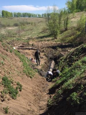 Тамбовская область, старый пруд 0.76 га. Востановление - IMG_8104.JPG