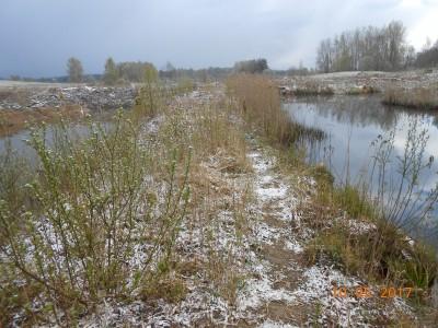 Вид гребня плотины между маточником и основным 6 га. - DSCN1961.JPG