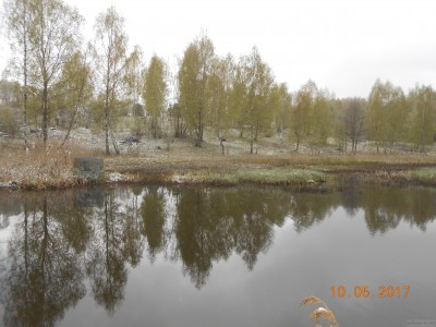 Вид на 6 га от плотины с маточного. - DSCN1963.JPG