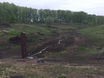 Тамбовская область, старый пруд 0.76 га. Востановление - IMG_8126.JPG