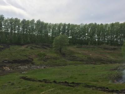 Тамбовская область, старый пруд 0.76 га. Востановление - IMG_8134.JPG
