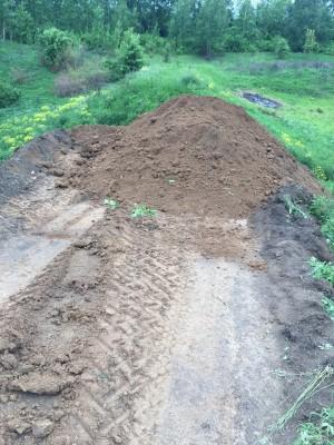 Тамбовская область, старый пруд 0.76 га. Востановление - IMG_8524.JPG