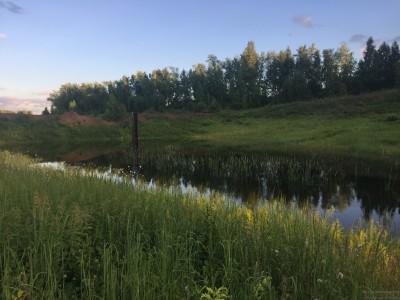 Тамбовская область, старый пруд 0.76 га. Востановление - IMG_8724.JPG