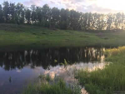 Тамбовская область, старый пруд 0.76 га. Востановление - IMG_8731.JPG