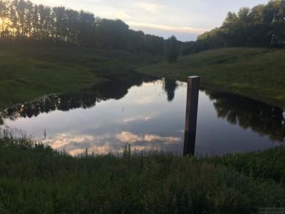 Тамбовская область, старый пруд 0.76 га. Востановление - IMG_8734.JPG