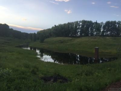 Тамбовская область, старый пруд 0.76 га. Востановление - IMG_8737.JPG