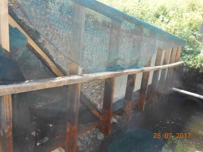 Рыбоуловитель, или упрощаем сбор рыбы при спуске прудов - DSCN2343.JPG