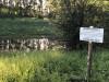 Тамбовская область, старый пруд 0.76 га. Востановление - 1DAC90AB-D194-44A9-82E4-122A1FDF9907.jpeg