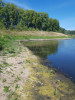 Тамбовская область, старый пруд 0.76 га. Востановление - AEDE9BD6-3C9A-47FA-9EA0-3A1D61EE2A4B.jpeg