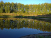 Тамбовская область, старый пруд 0.76 га. Востановление - 6C46FCE1-98EE-429E-9E23-04882642026A.jpeg