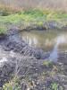Тамбовская область, старый пруд 0.76 га. Востановление - 427D98AC-9F01-4BB3-B067-3BBBD66B8336.jpeg