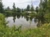 Рыболовство в пожарном водоёме 875 м2 - 20210703_131341.jpg